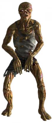 Feral Ghoul (Fallout Supplement) - D&D Wiki